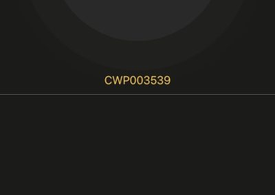 coolwallet-review-12